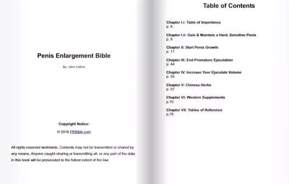 PE Bible Table Of Contents