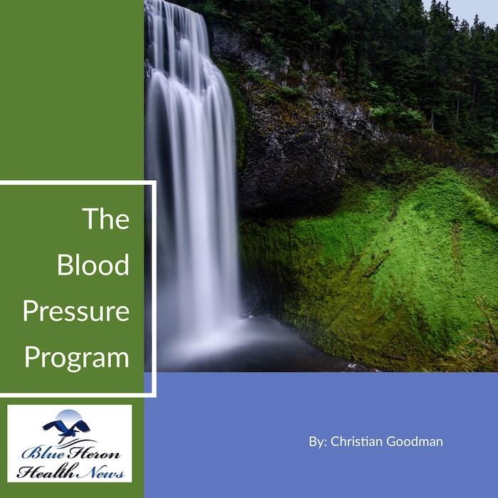 The Blood Pressure Program Book