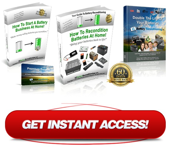 download ez battery reconditioning pdf