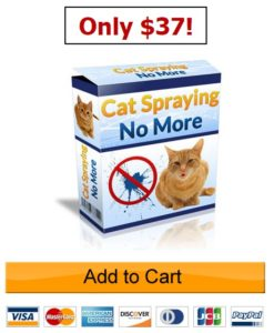 cat-spraying-no-more-order