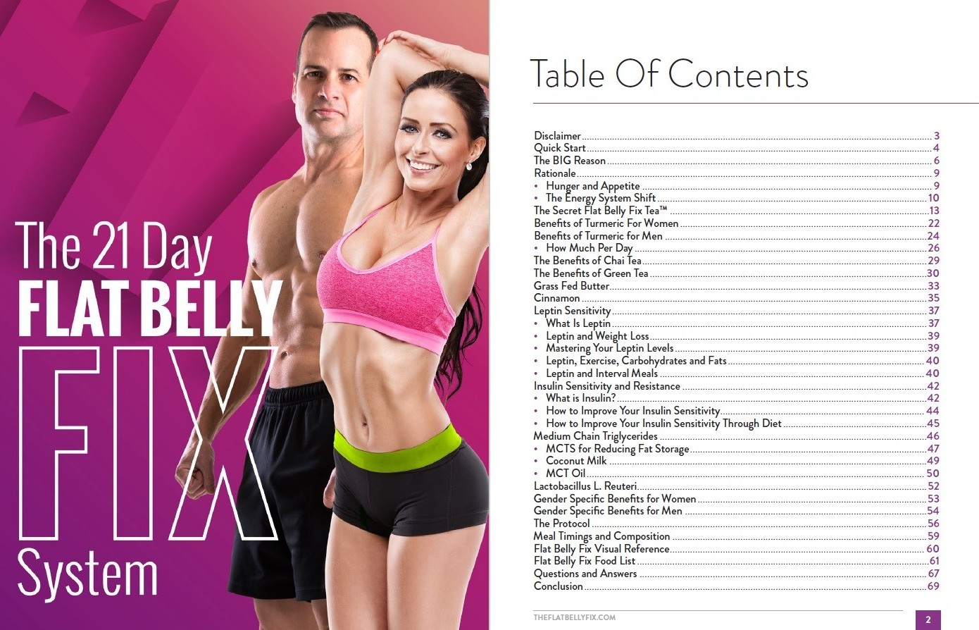 fla belly fix table of contents