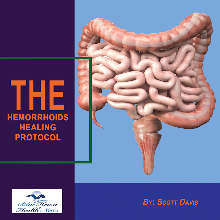 the hemorrhoids healing protocol