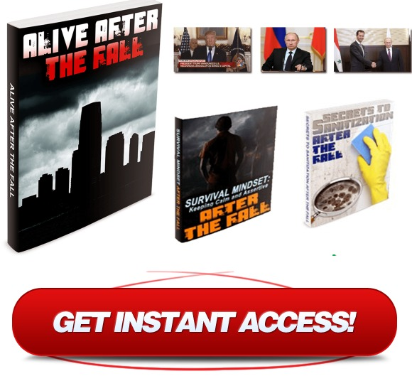 Download Alive After The Fall Book PDF - Buy Alive After The Fall Website