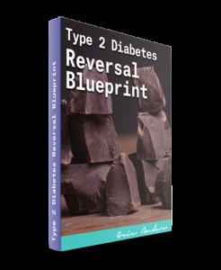 Type 2 Diabetes Reversal Blueprint Review