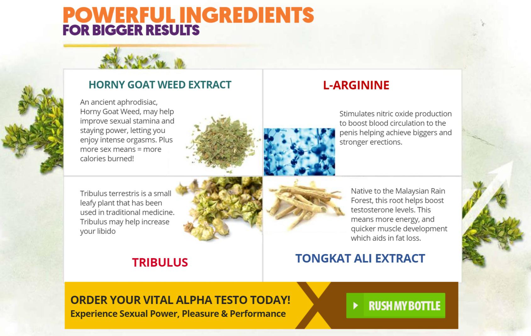 Vital Alpha Testo Ingredients Label