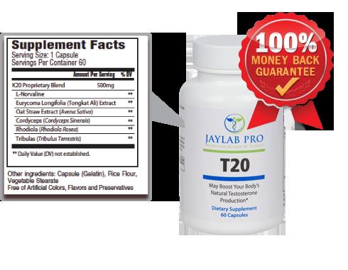 Jaylab Pro T20 Ingredients Label